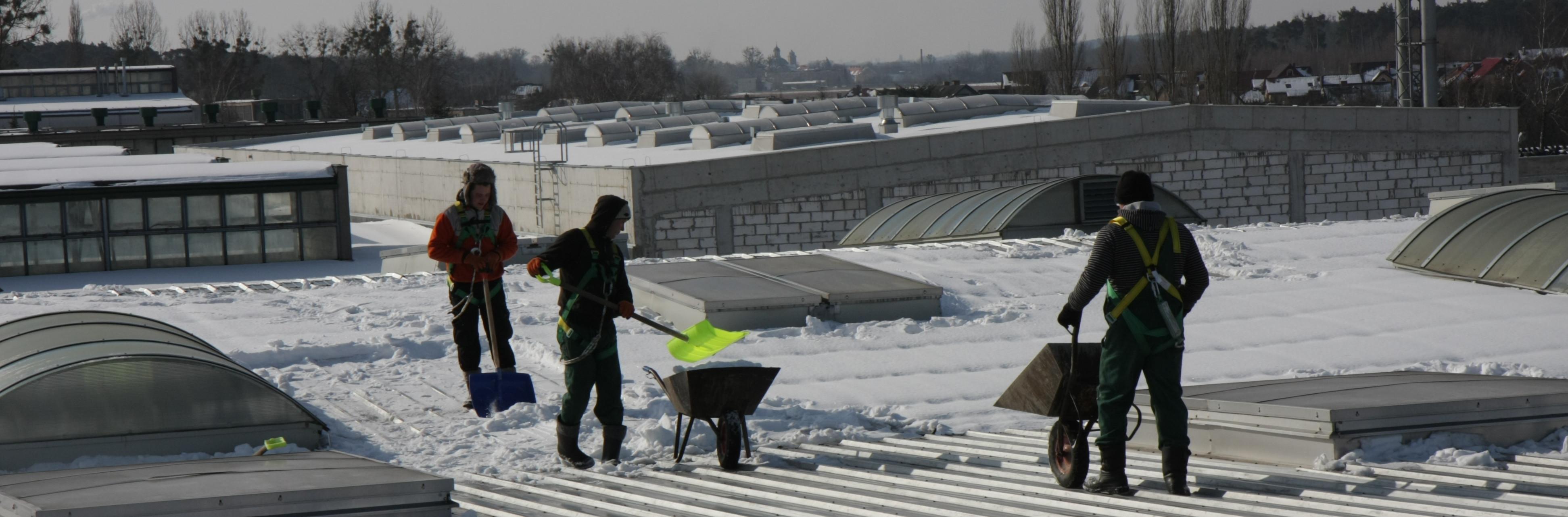 Odśnieżanie - Obraz-Zieleni.pl