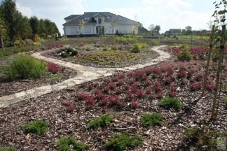 Ogród z dużym wrzosowiskiem – po założeniu w 2008