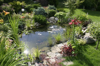Ogród podmiejski Umultowo. I nagroda w kategorii Najładniejszy Ogród Przydomowy 2003