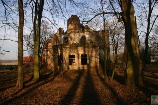 Park w Osieku. Ruiny dworu 2008
