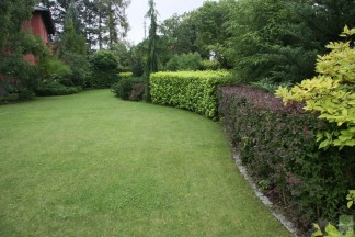 Ogród naturalistyczny formowany 2002