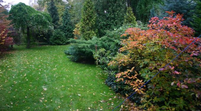 Ogród romantyczny w centrum miasta