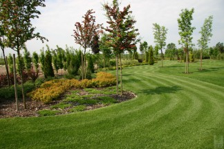 Ogród krajobrazowy – 2 ha