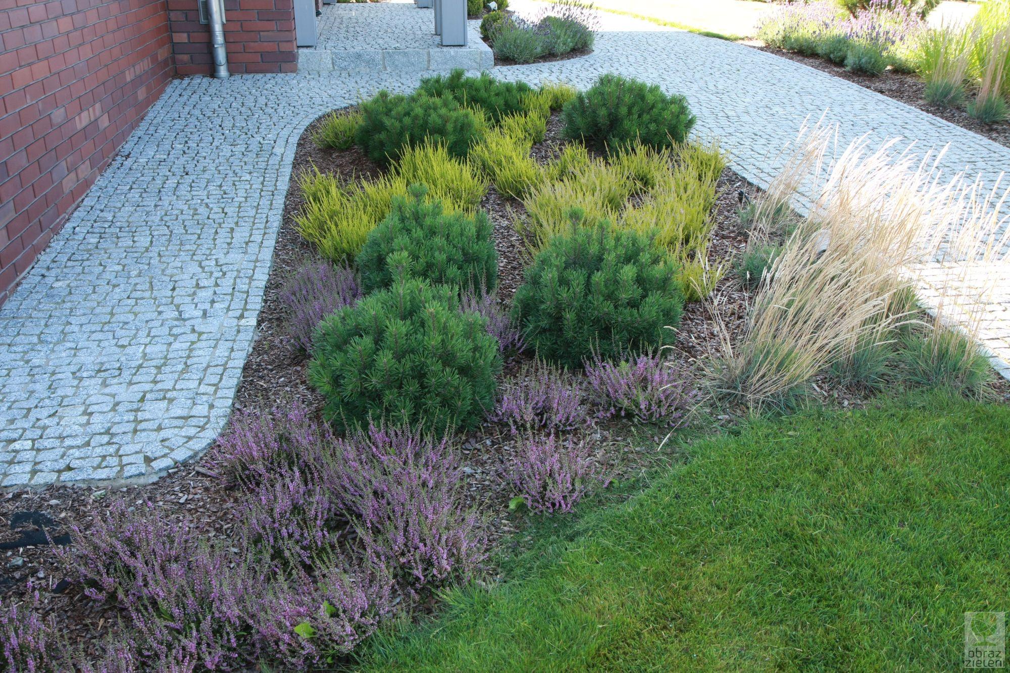 Ogród w tonacji wrzosowej
