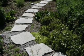 Ścieżka z płyt granitowych wśród bylin