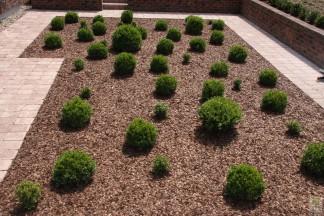 Ogród regularny nowoczesny