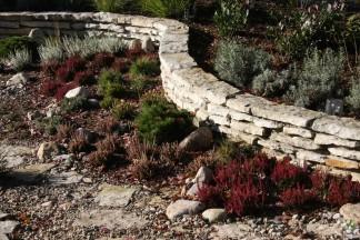Ogród prowansalski w budowie 2010